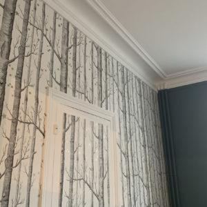 renovation peintre artisan piece a vivre peinture papier peint orleans (10)