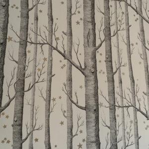 renovation peintre artisan piece a vivre peinture papier peint orleans (8)